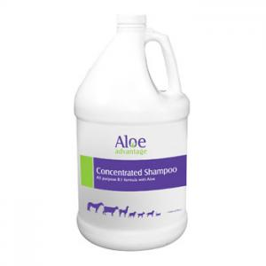Aloe Advantage Shampoo