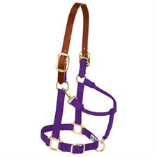 Weaver Breakaway Crown Nylon Halter - Weanling