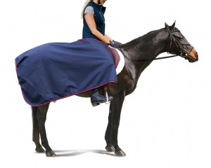 600D Centaur  Water Proof Breathable Exercise Sheet