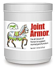 Joint Armor