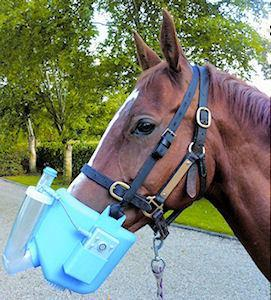 Flexineb2 Portable Equine Nebulizer
