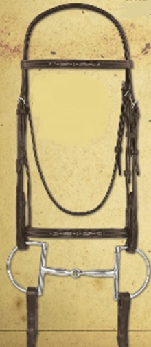 Bridle - Camelot Fancy Raised