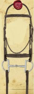 Bridle- Fancy Raised with Reins