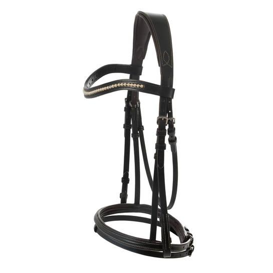 Magnum Bridle with Colorful Accents