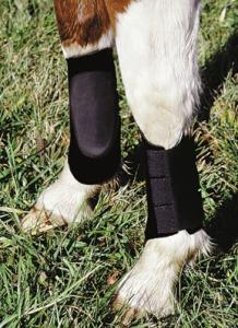 Splint Boot - Neoprene Black